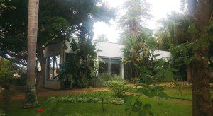 Image of Empreitada da Casa de Chá do Jardim Duque de Bragança